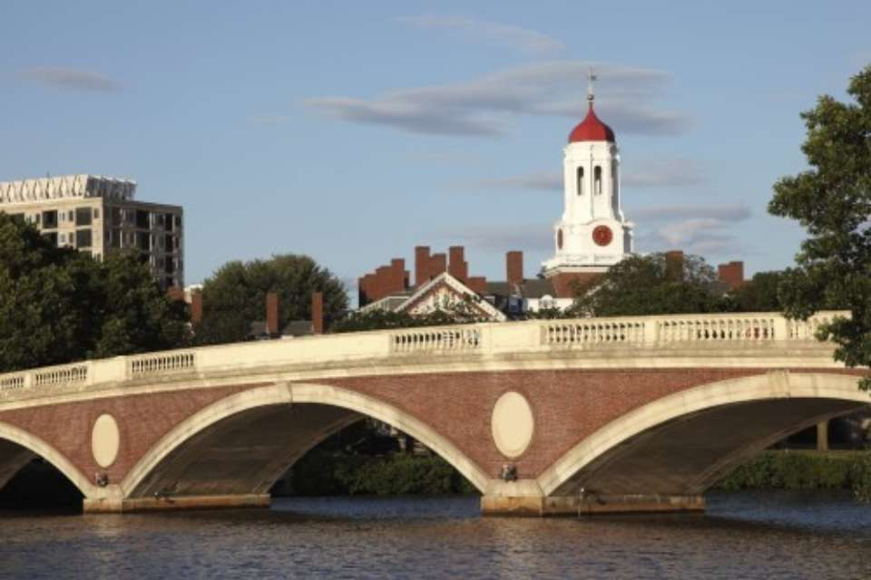Cambridge Website Photo